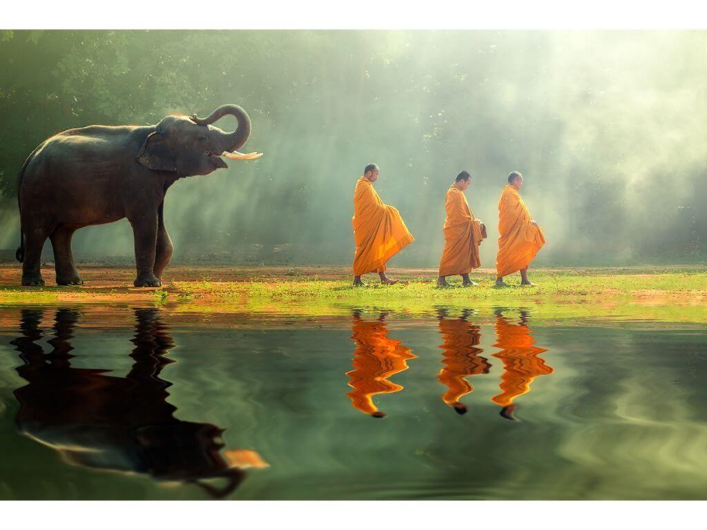 TAILANDIA-ELEFANTES-monjes