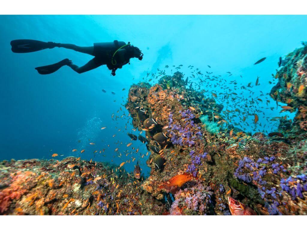 buceo-submarinismo-islas-maldivas-maldives