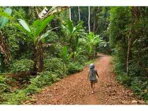 mujer-caminando-bosque-tropical-playa-koh-chang-tailandia