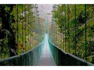 puente-colgante-parque-nacional-costa-rica
